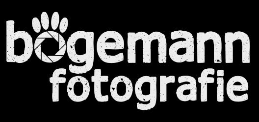 bögemann fotografie